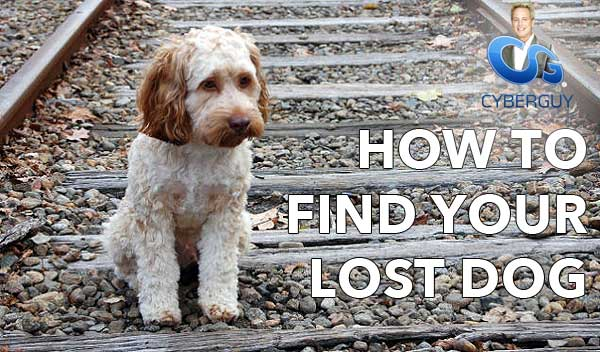 FindingRover app and Kurt the CyberGuy and Pet Technology and Lost Pets and Lost Dogs